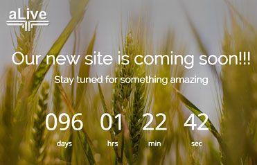 Coming soon Free Responsive Website Template