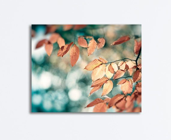 "Teal Brown Canvas Art - copper blue aqua turquoise beige nature photography branch branches gallery wrapped large print, ""November Bliss"" on Etsy, $55.00"
