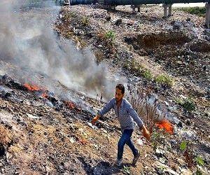 INN LIVE NEWS: India's New 'Green Legislation' Rules 'Huge Fines'...
