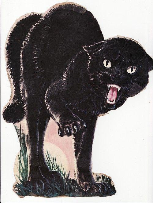 Hiss Black Cat In 2019 Cat Drawing Kitty Cat Art