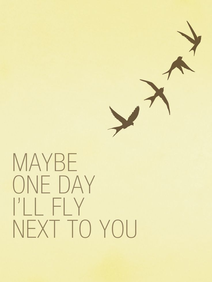 """Maybe one day I'll fly next to you."""