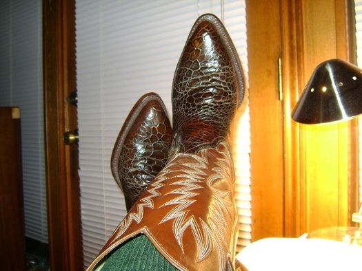 Vintage Sea Turtle from Mexico in the 1970s | Cowboy Boots ...