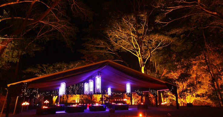 port douglas australia..dinner in the rainforest..magical !!