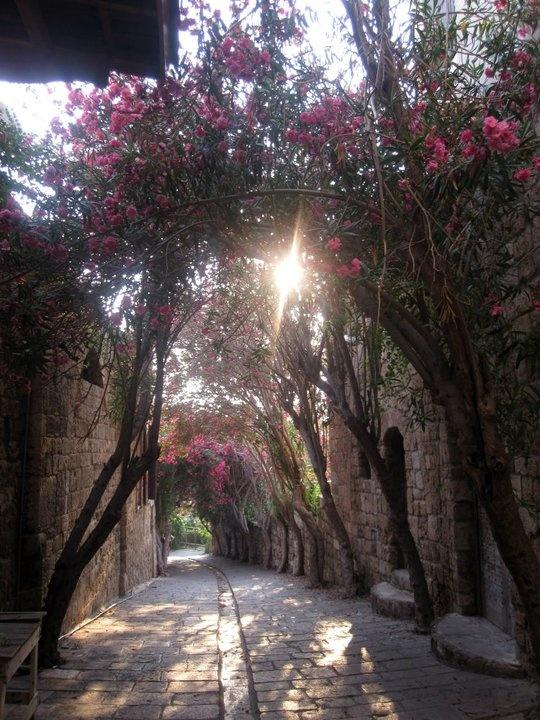 Byblos, Jbeil, Lebanon. Photo: Yi-Hwa Hanna.