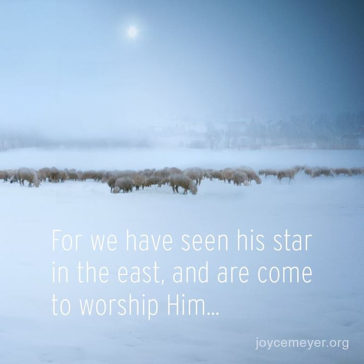 Superbe Beautiful Star Of Bethlehem! Christmas JesusChristmas QuotesChristmas ...