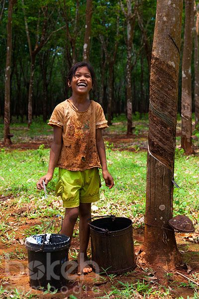 Khmer girl working in Chup rubber plantation | Kampong Cham Province, Cambodia