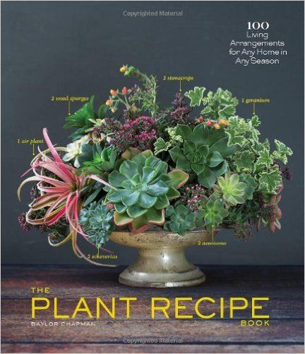 The Plant Recipe Book: 100 Living Arrangements for Any Home in Any Season: Baylor Chapman: 9781579655518: Amazon.com: Books