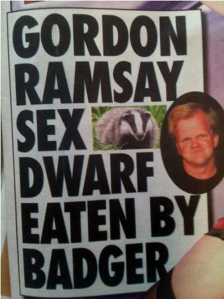 What is it with badgers?   The 30 Most Head-Scratchingly Bizarre News Headlines Of All Time