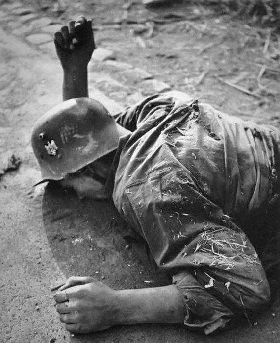 Crónica fotográfica de la Segunda Guerra Mundial 27417 - Maldito Insolente