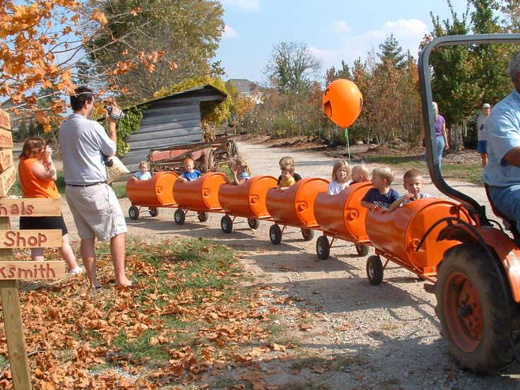 Pumpkin Fest | ... season's must visit: Pumpkin Harvest Festival at Stonycreek Farms