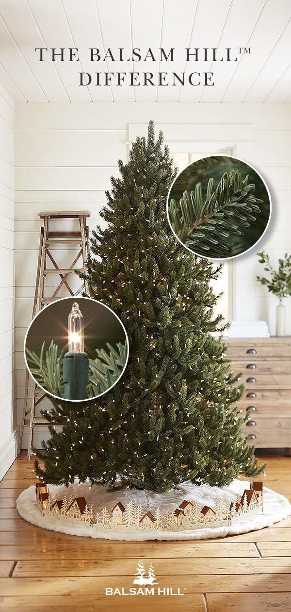 How To Save A Droopy Christmas Tree Somerset Live