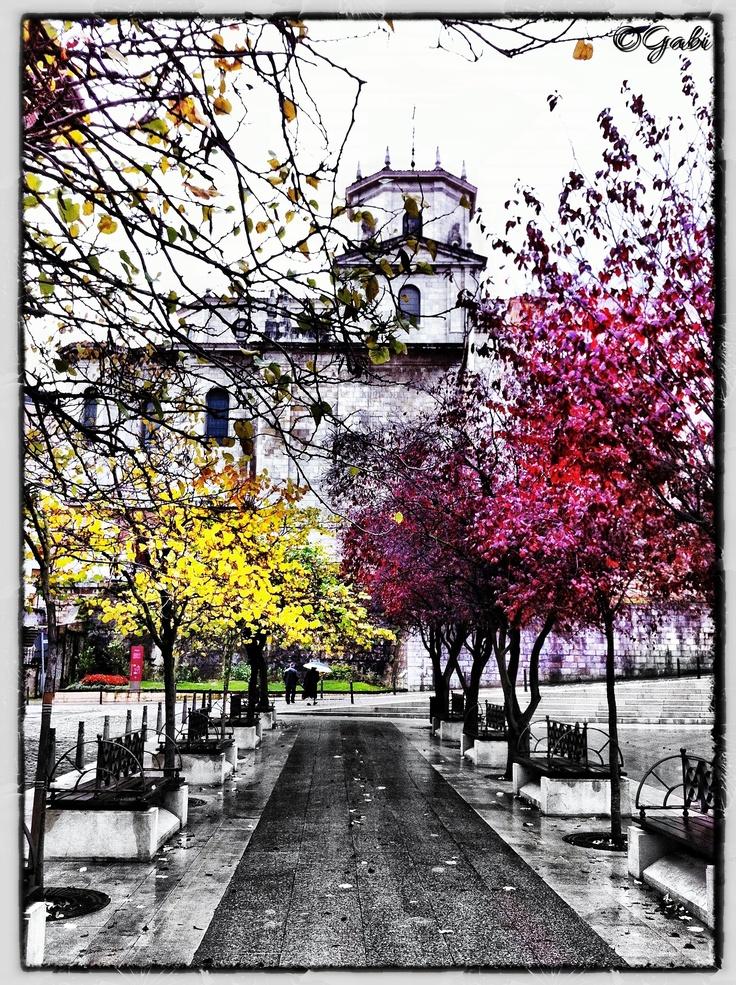 Vista de la catedral.  Santander  spain