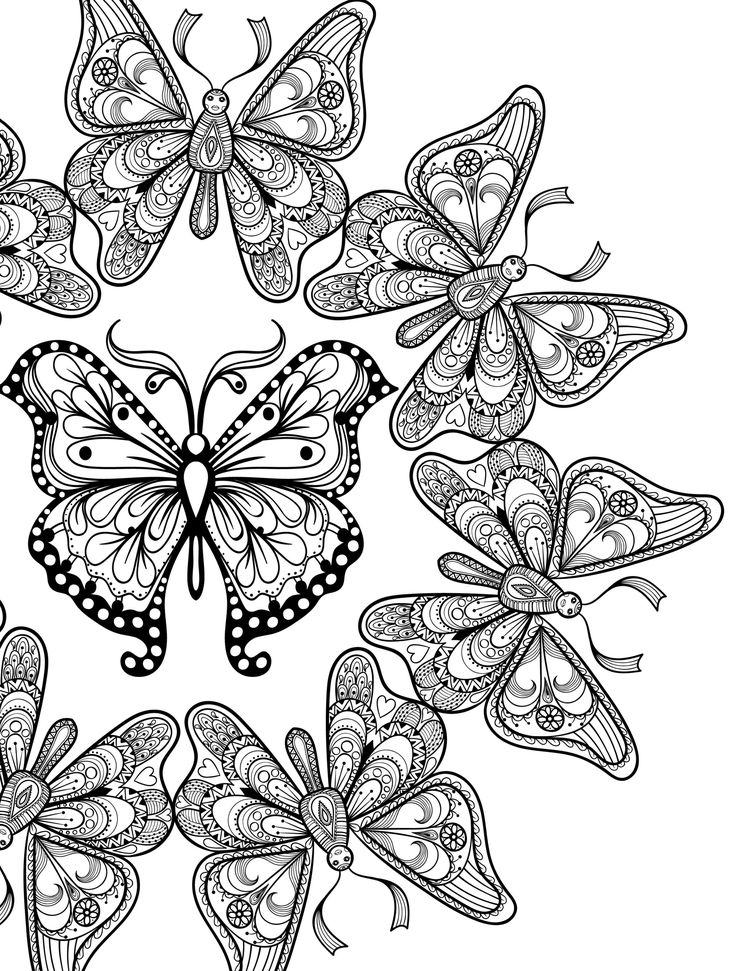 89 Best Butterflies Coloring Pages For Adults Images On