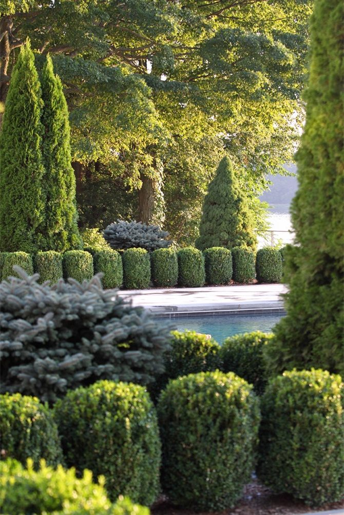 Beautiful use of conifers in the #landscape.