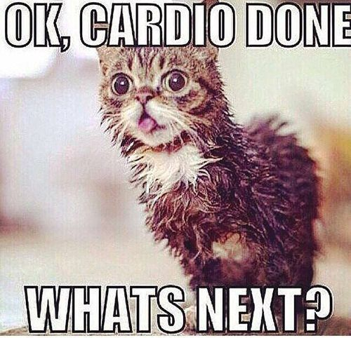 Fitness Humor #2: Ok, cardio done. What's next. - Exercise
