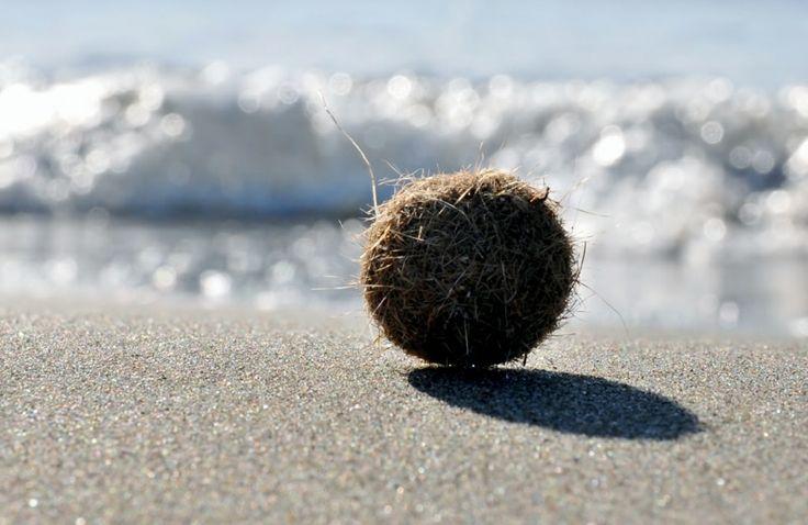 la spiaggia di forte dei marmi  #winter #inverno #mare #forte dei marmi #versilia #lucca #tuscany # sabbia #sand