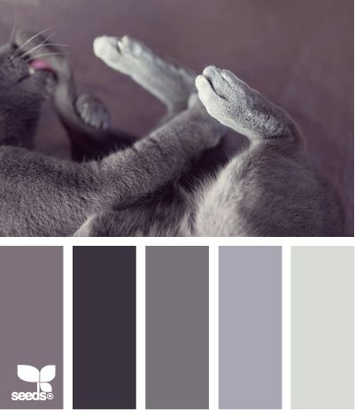 jessi... It made me LAUGH hahaha don't people usually pin these swatches for wedding color inspiration? bahaha Kitty wedding.