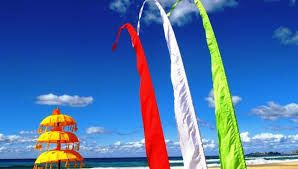 Image result for bali flags