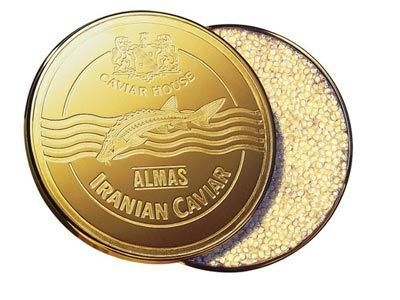 """A Most Expensive Caviar: Caviar is the most expensive food in the world, and this Iranian beluga called """"Almas Caviar"""" is the most expensive of them all. It comes from a species of fish that is between 60 to 1000 years old. A 3.9 pound container - $48,750.00"""