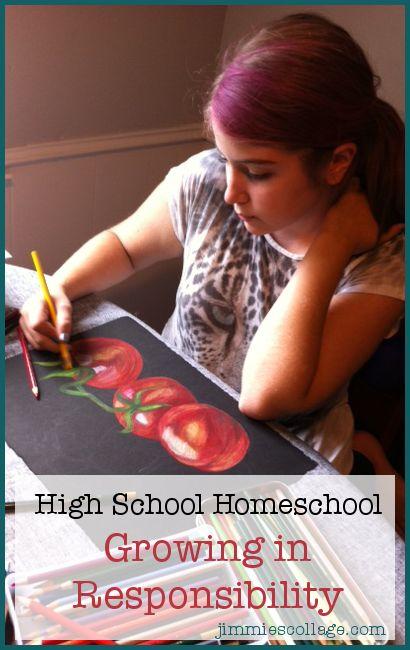 Encouraging post about homeschooling teens: Ninth Grade Homeschool First Semester Check-in: Maturity