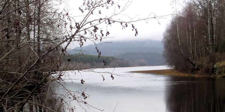 View from Lake Bogstad (Oslo) in November