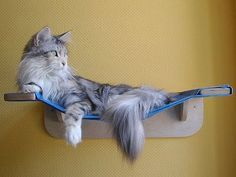 DIY hammock for cats with photos and instructions! #cats #CatHammock #CatShelf