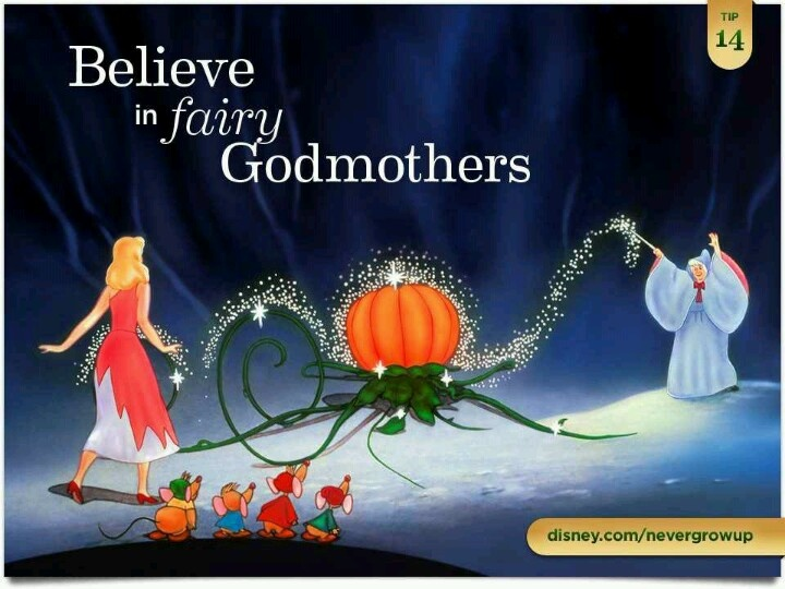 17 Best Images About FAIRY GODMOTHER On Pinterest