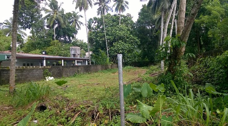 https://mylankaproperty.com/properties/commercial-land-sale-thalawathgoda/ New property (Commercial land for sale at Thalawathgoda) has been published on Sri Lanka Properties