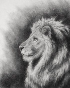 Lion of Judah Art images.Artwork of the Lion of the tribe of Judah and the Lion of Judah roaring. Illustrations of Aslan,Chronicles of Narnia,C S Lewis.