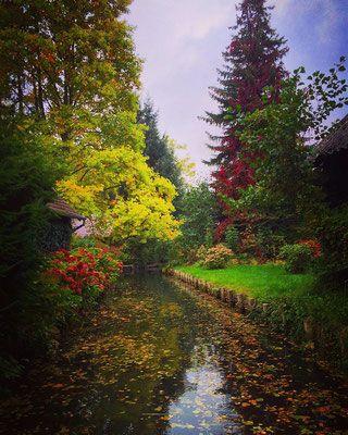 Herbstidylle in Lübbenau-Kaupen