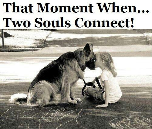 Two souls connect