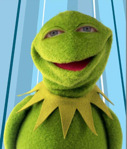 1000 Images About Mega Muppet Board On Pinterest: 1000+ Images About Muppet Mayhem On Pinterest