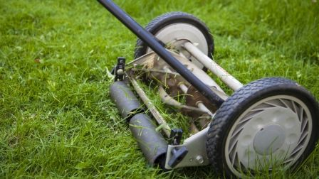 8 Maintenance Tips to Keep Your Lawn Mower Running | Angies List