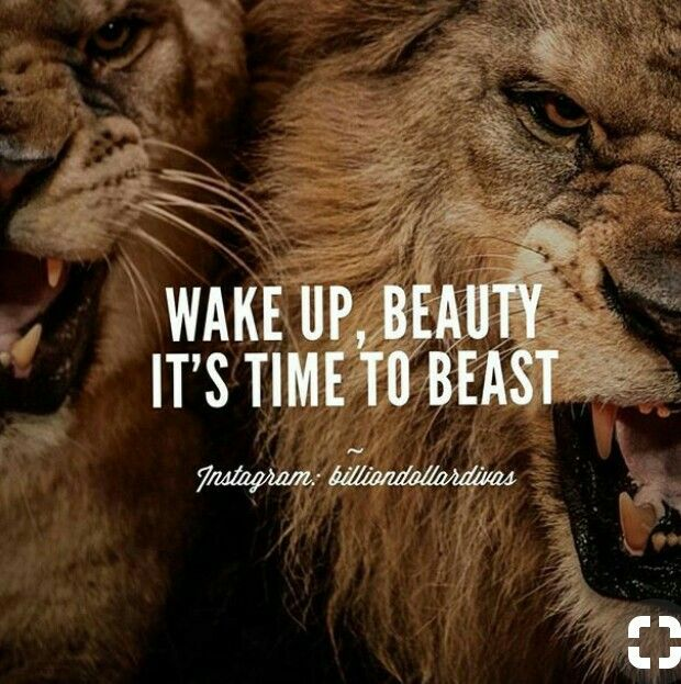 Wake Up Beauty Lion Quotes Pinterest Pins Trending