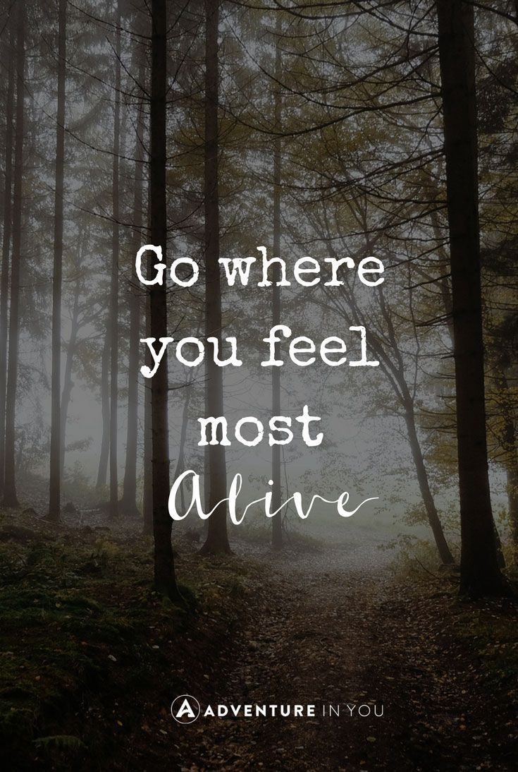 Go where you feel most alive quote