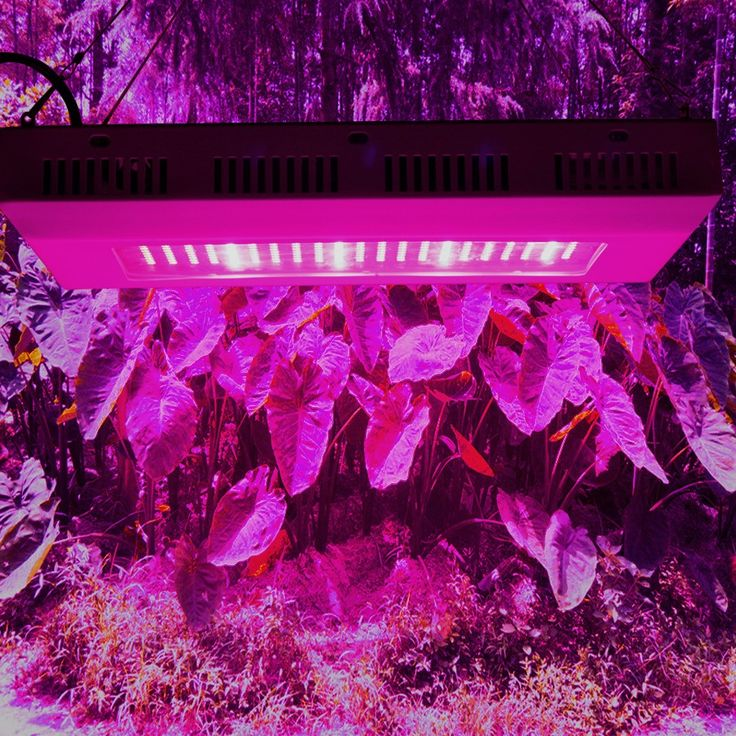 ==> [Free Shipping] Buy Best 300W Indoor hydroponic grow system cheap fluorescent grow lights for plants full spectrum led growing lights for grow tents Online with LOWEST Price | 32741167418