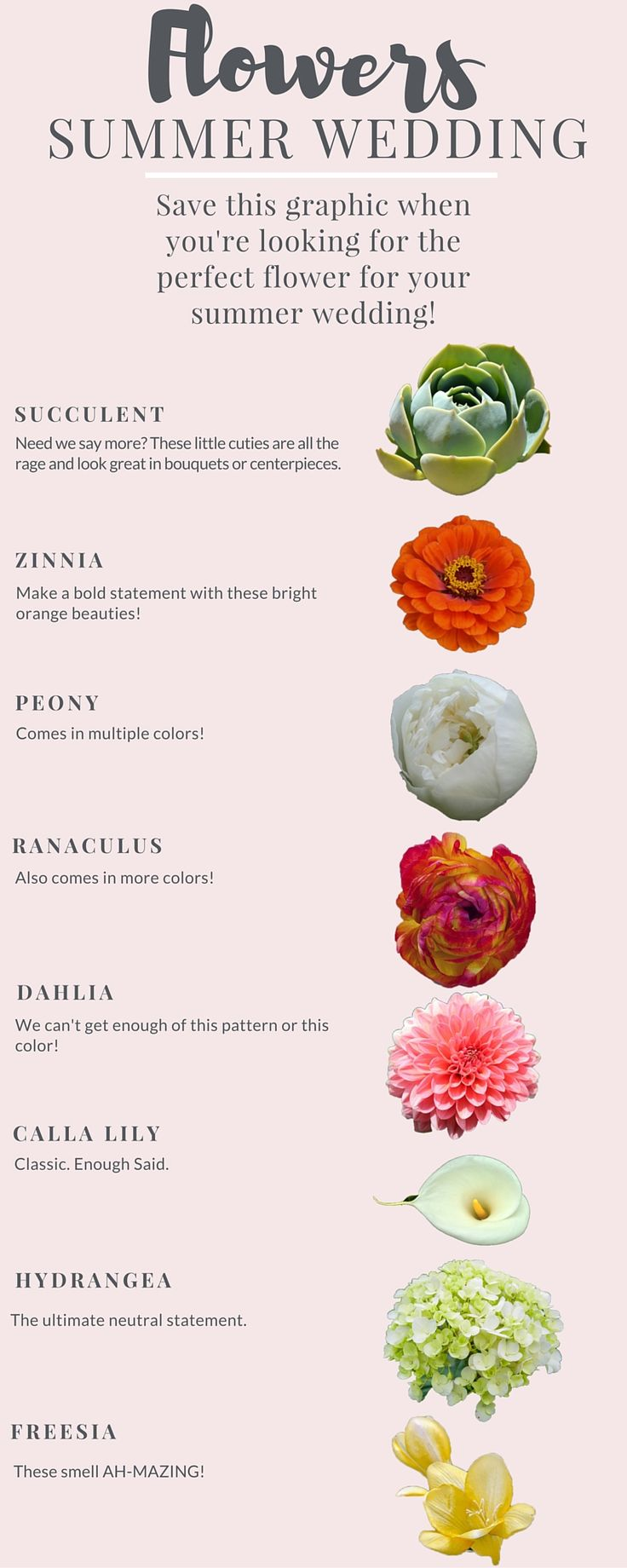 If you've been wondering which flowers are in season during your summer wedding look no further! We've rounded up a list a eight flowers that are sure to make the floral design at your summer wedding a huge hit!