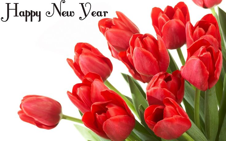 Happy New Year 2016 Flowers Images, Wallpapers