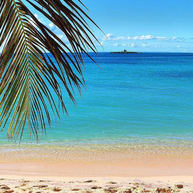 Guadeloupe Beach: Marie-Galante Guadeloupe #mariegalante #guadeloupe #beach
