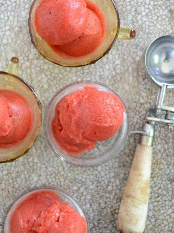 Homemade Strawberry Balsamic Sorbet is the perfect spring recipe when the strawberries are so good. It's dairy free and SO refreshing! www.mountainmamacooks.com
