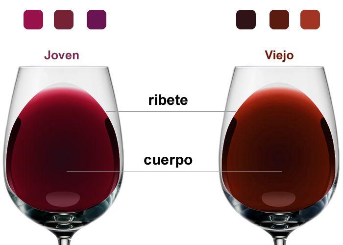 Aprenda los secretos del color del vino https://www.vinetur.com/2014051415348/aprenda-los-secretos-del-color-del-vino.html
