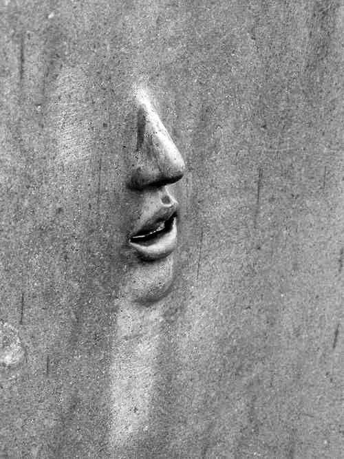 Weer het werken met schaduwen, waarin het gezicht van een mens tevoorschijn komt. Niet schreeuwend voor hulp, maar het geeft een verontrustend gevoel.