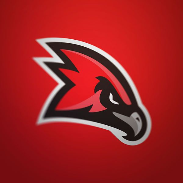 Red Hawk Concept on Behance