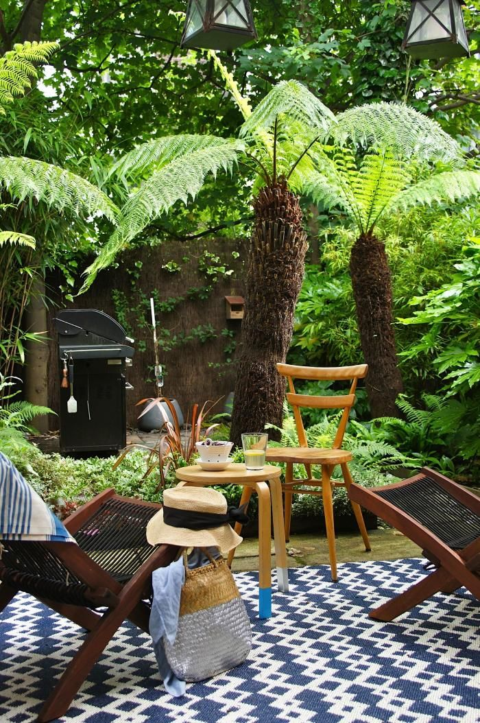 A micro rain forest of hardy, shade resistant plants in the heart of London