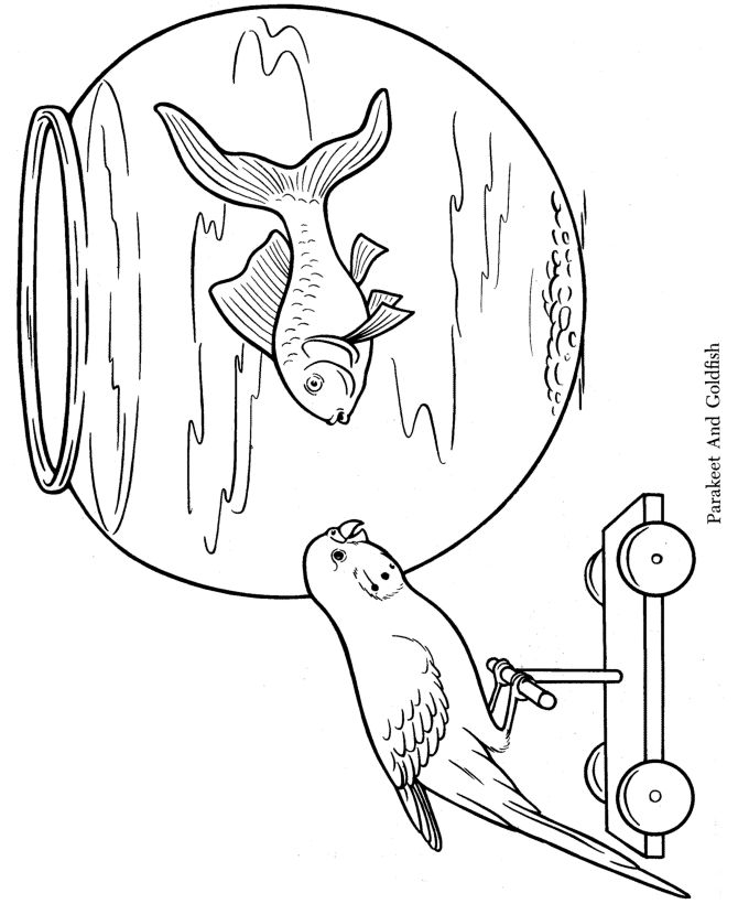 Christmas Coloring Pages Betta Fish Coloring Coloring Pages