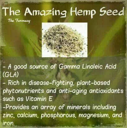 The amazing hemp seed.