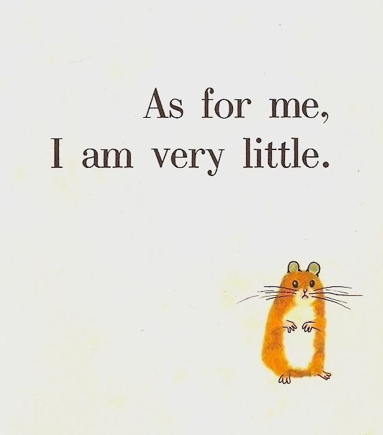 Vintage Illustration from 1960s childrens book, cute hamster.