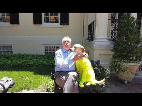 SDWR would like to give a very special thank you to our wonderful Governor Terry McAuliffe for the compliments paid to Service Dogs by Warren Retrievers for ...