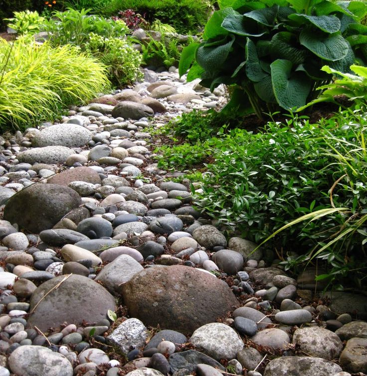 Landscaping With River Rock Dry River Rock Garden Ideas: 12 Best A Self-Made Rock River For Your Garden Images On