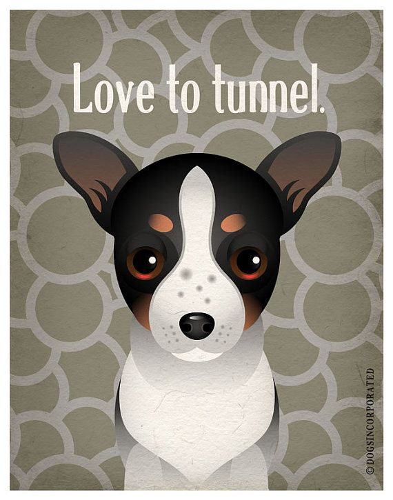 Rat Terrier Funny Dogs Original Art Print  by DogsIncorporated, $29.00